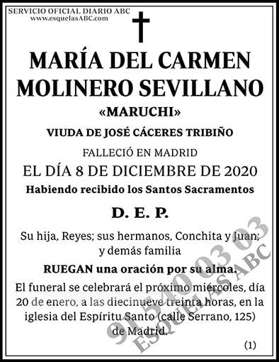 María del Carmen Molinero Sevillano