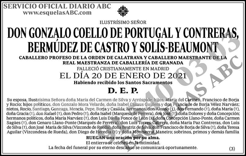 Gonzalo Coello de Portugal y Contreras, Bermúdez de Castro y Solís-Beaumont