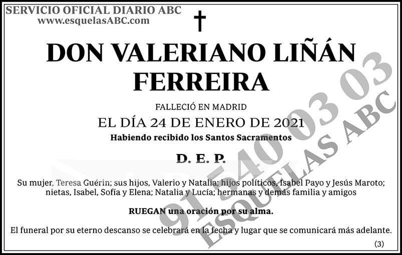 Valeriano Liñán Ferreira