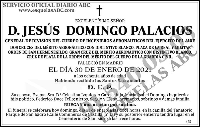 Jesús Domingo Palacios