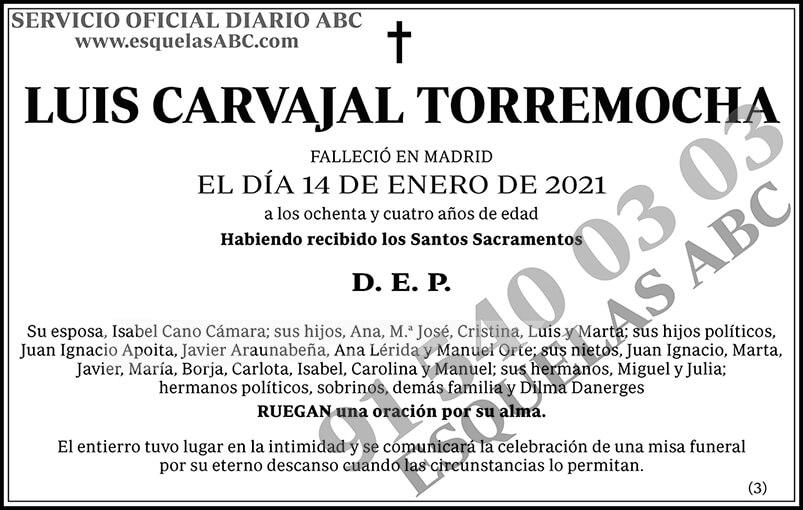 Luis Carvajal Torremocha
