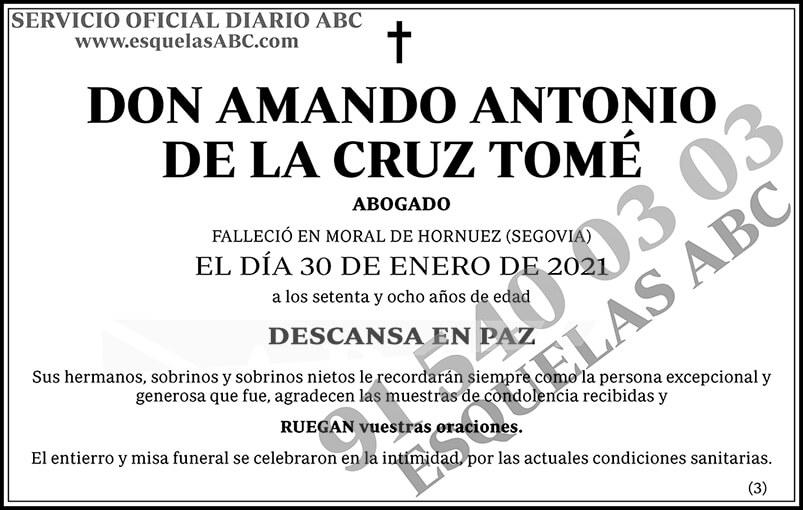 Amando Antonio de la Cruz Tomé