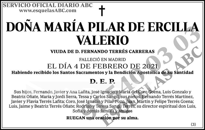 María Pilar de Ercilla Valerio
