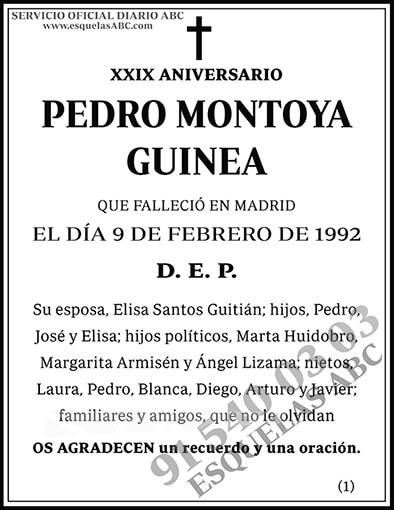 Pedro Montoya Guinea