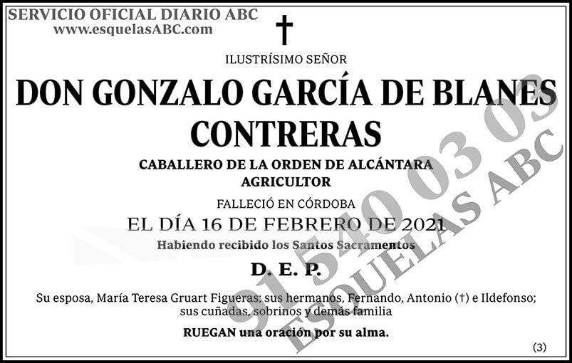 Gonzalo García de Blanes Contreras