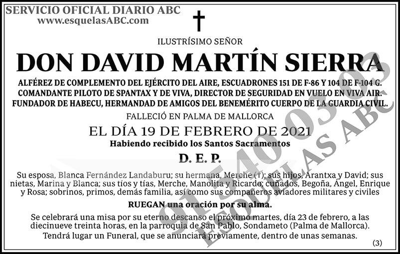 David Martín Sierra