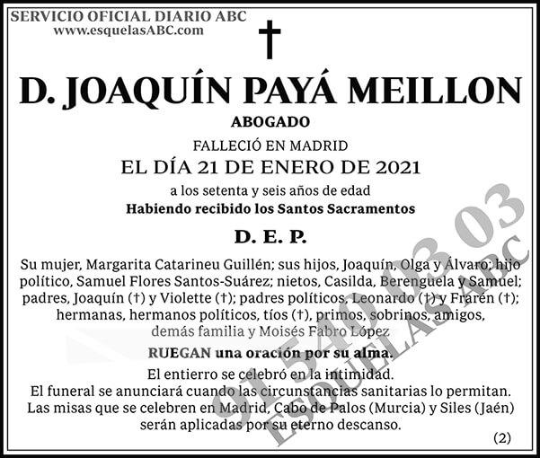 Joaquín Payá Meillon