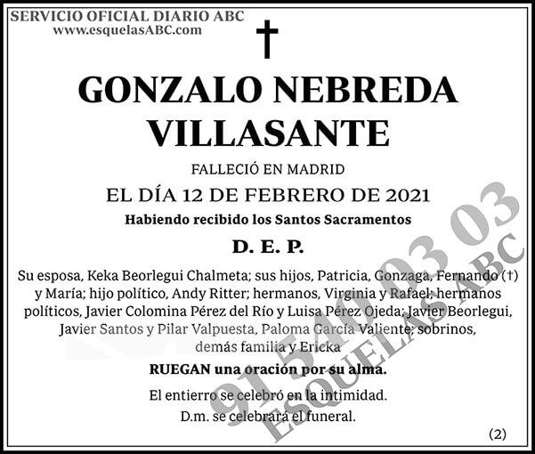 Gonzalo Nebreda Villasante