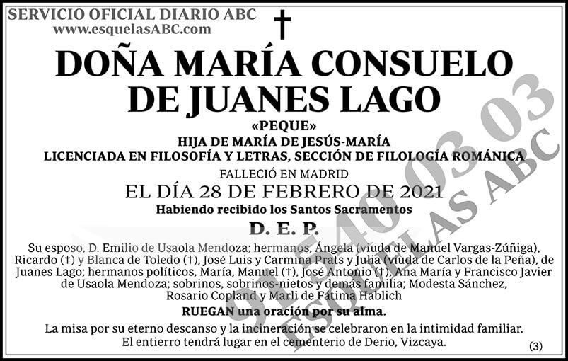 María Consuelo de Juanes Lago