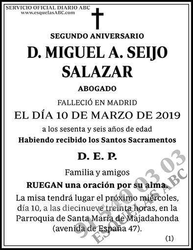 Miguel A. Seijo Salazar