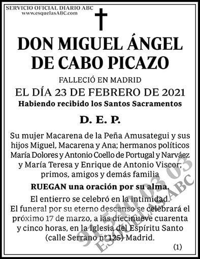 Miguel Ángel de Cabo Picazo