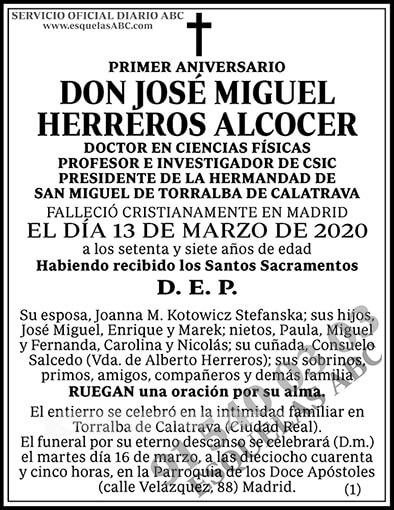 José Miguel Herreros Alcocer