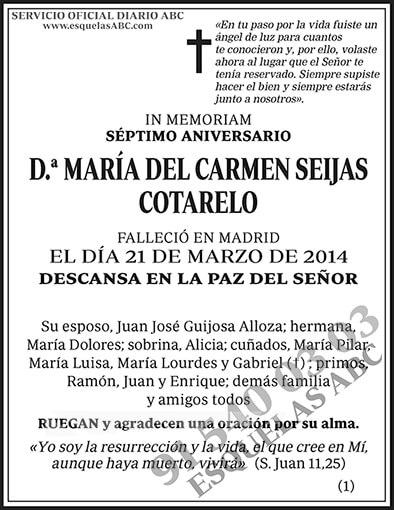 María del Carmen Seijas Cotarelo