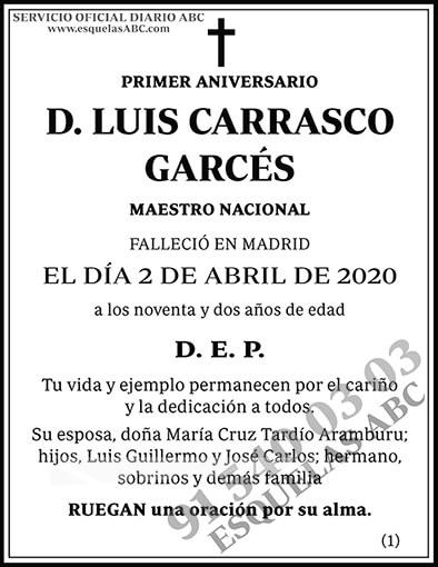 Luis Carrasco Garcés