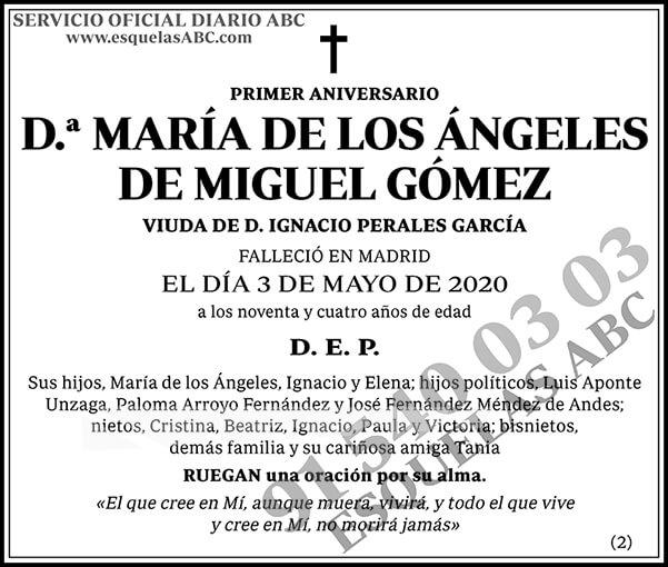 María de los Ángeles de Miguel Gómez