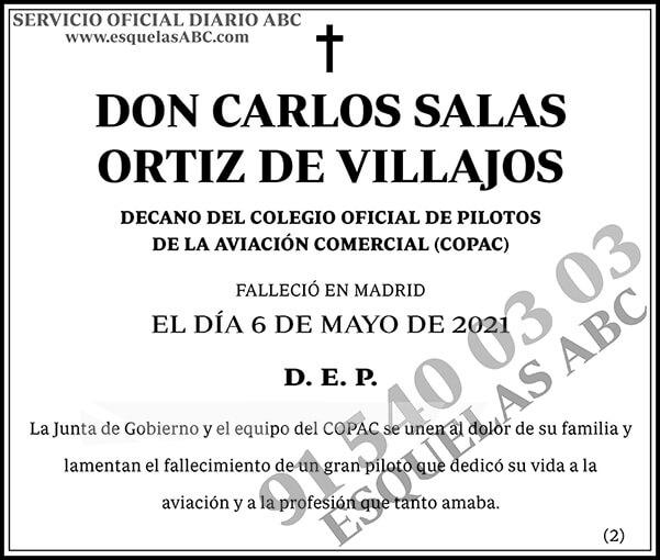 Carlos Salas Ortiz de Villajos