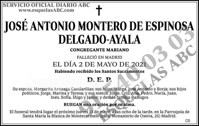 José Antonio Montero de Espinosa Delgado-Ayala