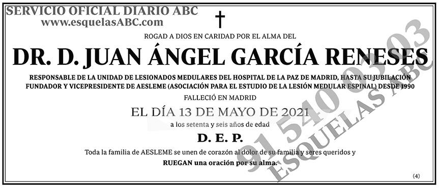 Juan Ángel García Reneses