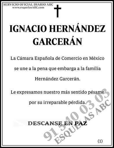 Ignacio Hernández Garcerán