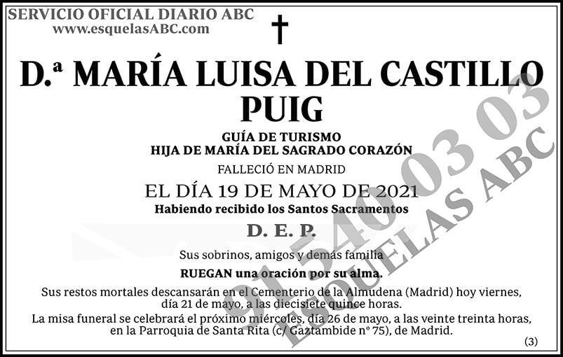 María Luisa del Castillo Puig
