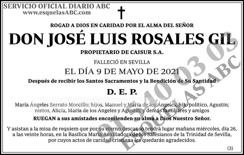 José Luis Rosales Gil
