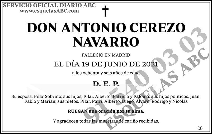Antonio Cerezo Navarro