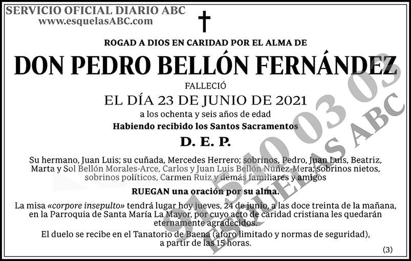 Pedro Bellón Fernández