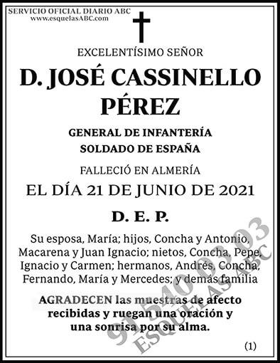 José Cassinello Pérez