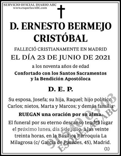 Ernesto Bermejo Cristóbal