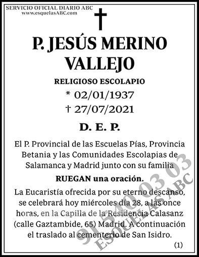 Jesús Merino Vallejo
