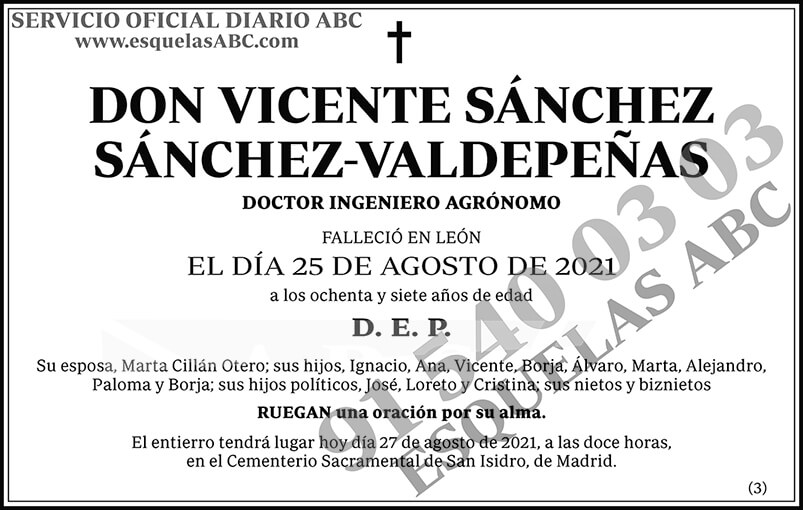 Vicente Sánchez Sánchez-Valdepeñas