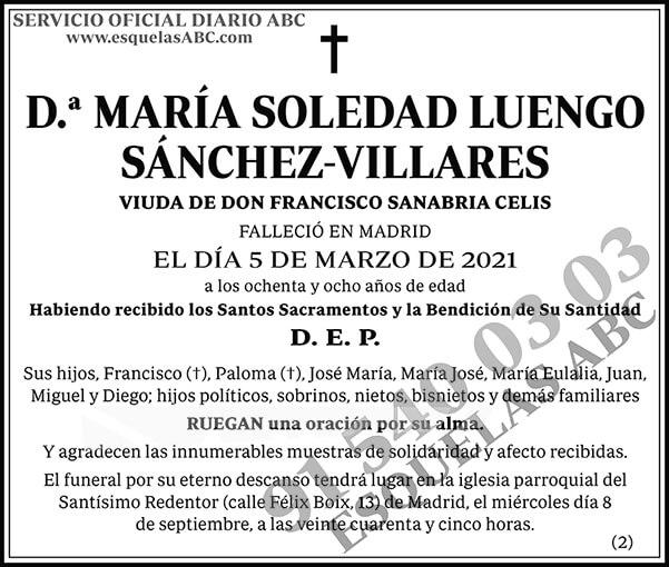 María Soledad Luengo Sánchez-Villares