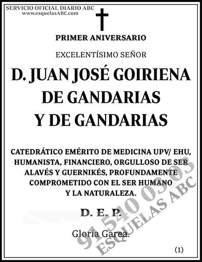 Juan José Goiriena de Gandarias y de Gandarias
