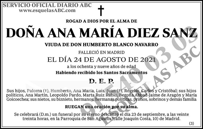 Ana María Diez Sanz