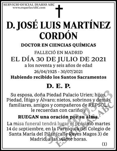 José Luis Martínez Cordón
